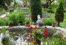 Vámosszabadi – Ujhelyy Károly 45 éve műveli Vámosszabadin a legszebb veteményest