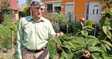 Tiszafüred – Büszkén ápolja kun gyökereit a nyugalmazott pedagógus
