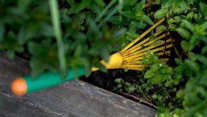 Budapest XI. kerület – Díjazták a kerti munkát