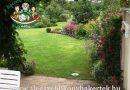Minden napra 2 kert – A legszebbek közül Bános Anna és Nagy Péter Szombathely