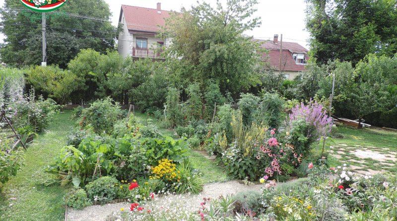 Minden napra 2 kert – A legszebbek közül BAKARECZ JÁNOSNÉ GYÖRGYI Magánkertesként vett részt Dombóvár