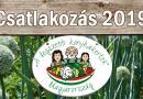 2019. Csatlakozás