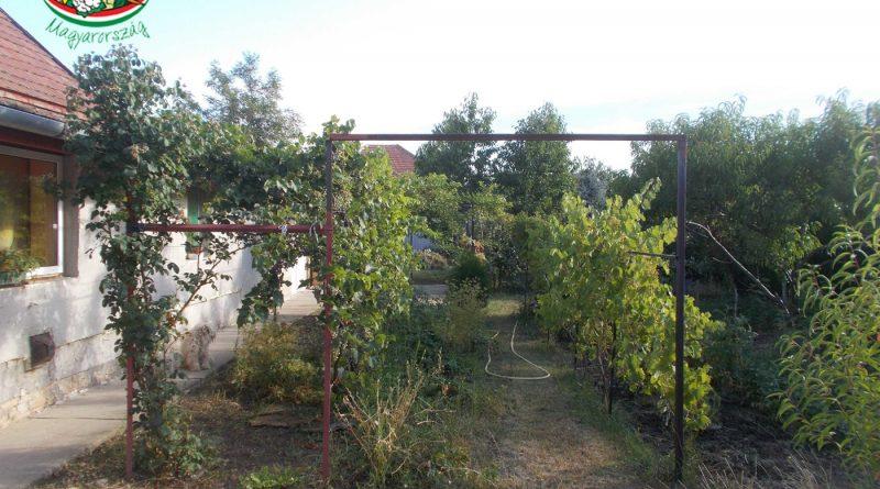 Minden napra 2 kert – A legszebbek közül KNAPPNÉ MAGDA VALÉRIA Szajol