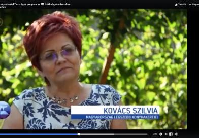 Kovács Szilvia az M1 Kék Bolygó műsorában + videó