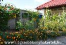 Minden napra 2 kert – A legszebbek közül DUNASZENTGYÖRGYI I. SZ. ÓVODA Dunaszentgyörgy