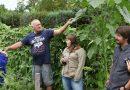 Nagykanizsa – Elindult a kertek szemléje Nagykanizsán
