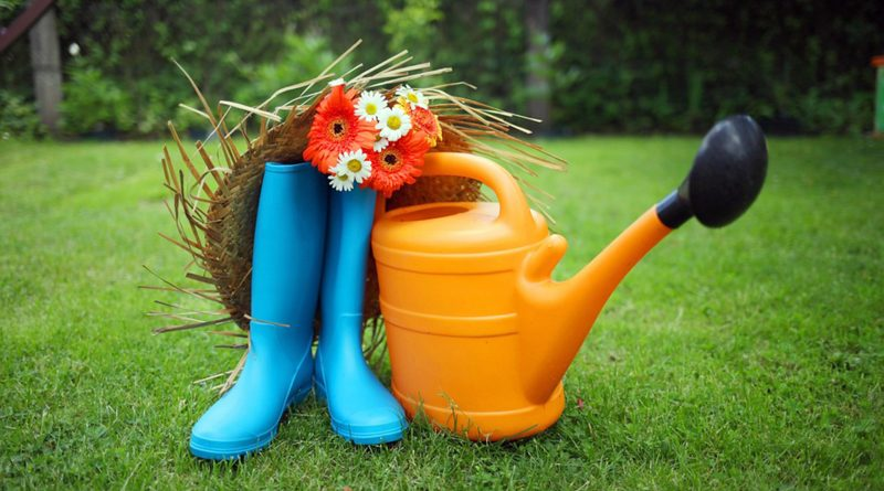 Gyula – Gondozzuk kertjeinket!