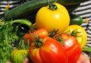 Kisapostag –  Keresik a legszebb kisapostagi konyhakerteket