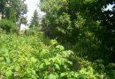 Minden napra 2 kert – A legszebbek közül Eger UTASSY GYULA