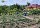 Minden napra 2 kert – A legszebbek közül Esztergom ARGYELÁN JÓZSEF ÉS ARGYELÁN JÓZSEFNÉ