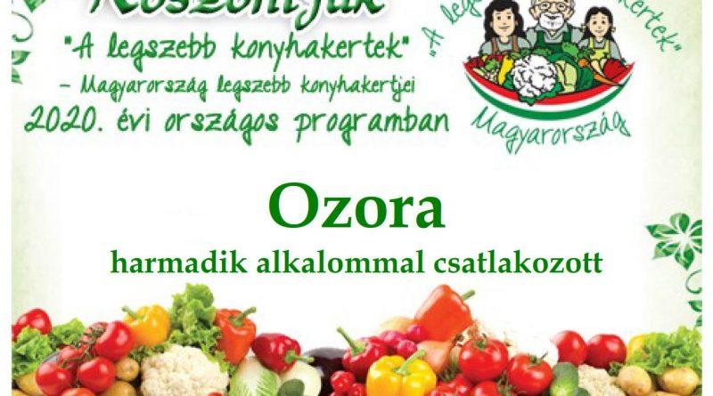 Ozora – Tolna megye  második 2020. évi csatlakozó települése