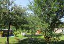 Minden napra 2 kert – A legszebbek közül Szeged SZIRÁKI GRÉTA ÉS KORPA TAMÁS, aki Zártkert 3. – Vegyes kategóriában kapott országos jelölést,