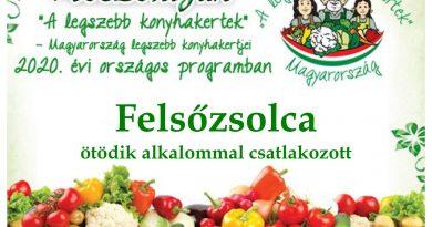 Felsőzsolca – Borsod-Abaúj-Zemplén megye negyedik 2020. évi csatlakozó települése