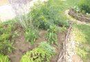 ÍGY CSINÁLOM ÉN! Óvoda kert Balkány Szent Jácint Görögkatolikus Óvoda