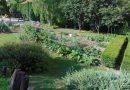 ÍGY CSINÁLOM ÉN! Óvoda kert Mosonmagyaróvár Hildegard Óvoda