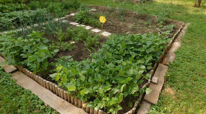 ÍGY CSINÁLOM ÉN! Óvoda kert Pusztaszabolcsi Városi Óvoda és Bölcsőde Manóvár Zsiráf Óvoda