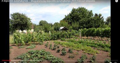 Felcsút – Nevező kertek bemutatkozásas