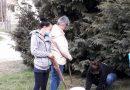 Nagyesztergár – Száz facsemetével gazdagodott Nagyesztergár