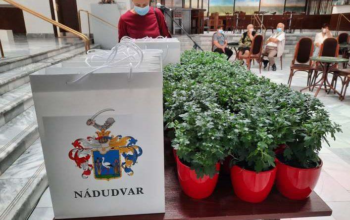 Nádudvar – Kétféle kertverseny is van Nádudvaron