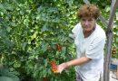 Keresik az ország legszebb kertjeit